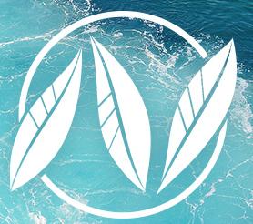 Natara_feller_Energy_Law_logo_water