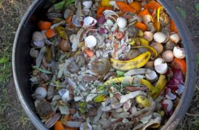 compost_gptf_2013 (1)