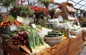 homepage_farmstand2
